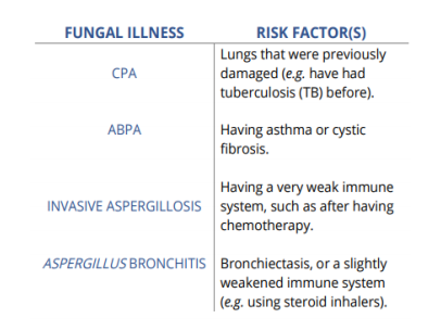 Risk factors for different types of fungal disease, including CPA, ABPA, Invasive Aspergillosis and Aspergillus Bronchitis